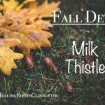 detox milk thistle