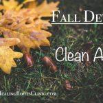 detox clean air